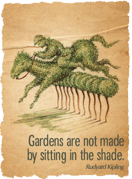 Gardens are not made by sitting in the shade.